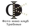 logoFKKTREBINJE_resize